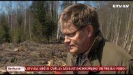 Latvijas mežus izvēlas ārvalstu kokrūpnieki un pensiju fondi